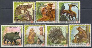 1989 Fauna Animals Mammals Wild Cats Bears 1976 Guinea EQ 7V Set MNH