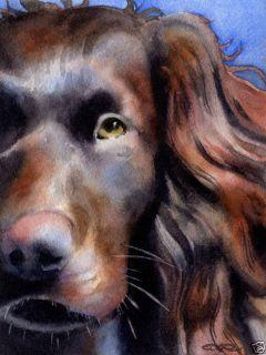 Boykin Spaniel Watercolor Dog Art Note Cards by DJR
