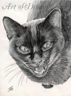 Black Cat Katze Kitten Kitty Chat Gato Feline Kater Kätzchen Drawing