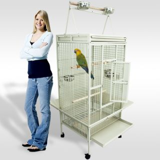 Parrot Cage Bird Cockatiel Parakeet Finch Playtop Gym Perch Stand