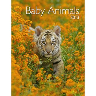 Baby Animals 2013 Softcover Engagement Calendar