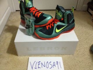 Lebron 9 Cannon South Beach Yeezy Nike SB