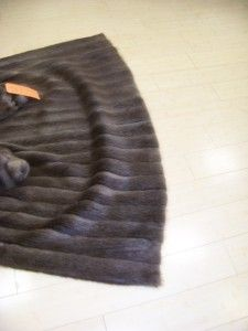 FUR; NATURAL CANADIAN BLONDE BEAVER COAT WING COLLAR BAND CUFF ON