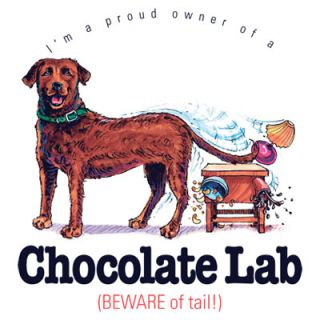 Funny Dog Tshirt Chocolate Lab Beware Of Tail Puppy Pet Paw Canine