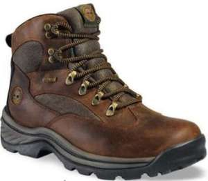 Timberland Mens Chocorua GTX Hiking Boots Brown 15130