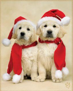 Fleece Throw Blanket 48 X60 Puppy Dog Santa Claus Christmas Puppies