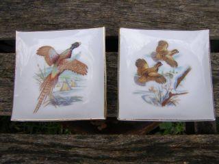 Vintage Fine Porcelain Pheasant Bird Mini Square Plates