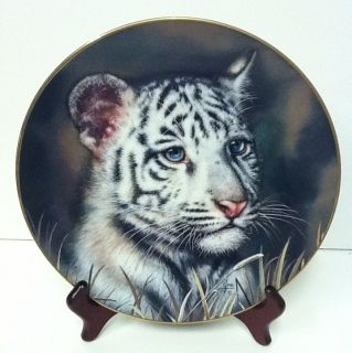 White Tiger Cub Princeton Gallery 1992 Porcelain Collector Plate