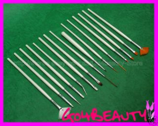 Comprehensive Nail art pens Brushes Set of 15