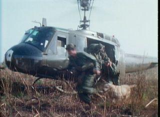Combat Tracker Vietnam War Dogs Labrador Retriever