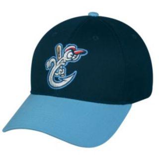 Corpus Christi Hooks Houston Astros AA Minor League Licensed Baseball