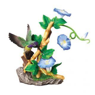 Andrea Sadek Costas Hummingbird Morning Glories 20039 Bird Flower