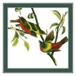 James Audubon Bird Painted Bunting Counted Cross Stitch Chart