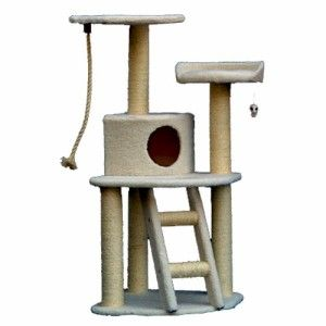 48 Cat Kitten Bungalo Tree Gym with Sisal Rope Scratching Posts and