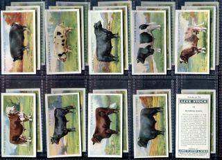 Card Set, John Player, LIVE STOCK, Pig,Bull,Cow,Horse,Ram,Cattle, 1925