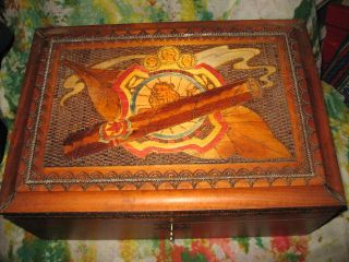 Diamond Crown Carved Lion Humidor Accessories etc Dove Tail Lock 14x6