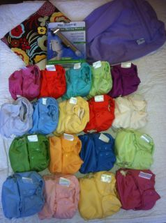 Cloth Diapering Starter Kit + Organic Bumgenius Elemental (18)