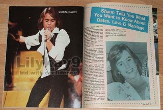 Teen Beat Andy Gibb Kristy McNichol Shaun Cassidy The Bee Gees Leif