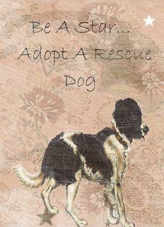 Dog T Shirt Adopt Rescue Dog Humane Star s M L XL 2X 3X