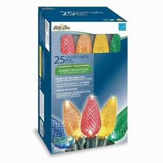 113 0091 winter lane multicolor led lights 25 count rating be the
