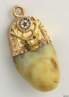 Faux Pboe Elk Tooth Fob 10K Solid Yellow Gold Vintage Enamel Polished