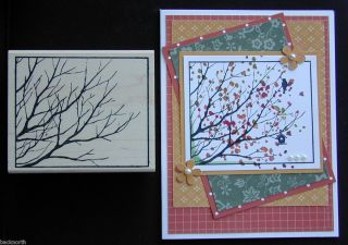 Stamp Lot FALL BRANCH OUT MAGNIFIED framed tree & Stampin up bonus