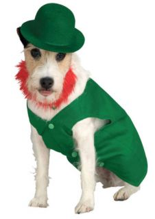 St Patrick's Day Leprechaun Dog Costume