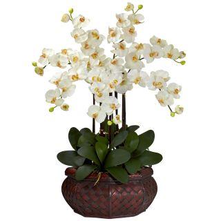Large 30 Artificial Silk Fake Cream Orchid Flower Arrangement w Vase