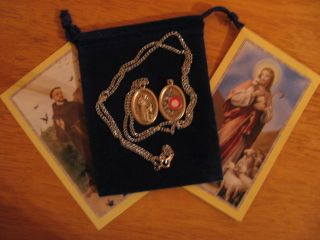 St Francis Assisi Relic Saint Medal 24 inch Necklace