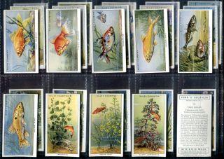 Tobacco Card Set, WD & HO Wills, POND & AQUARIUM, Tropical Fish, 2nd