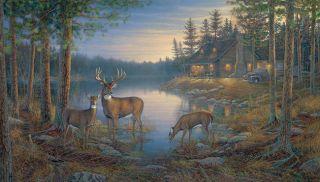 Lodge Cabin Forest QUIET PLACE DEER 9X15 Wallpaper Wall Decor Mural
