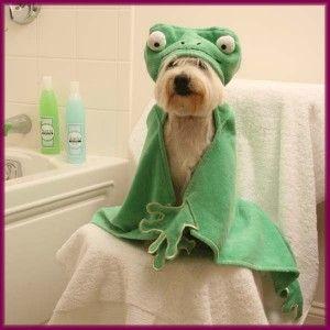 DUCK LAMB BUNNY HOODED HOODIE LARGE PET DOG BATH TOWEL 30X24 FREE TOY
