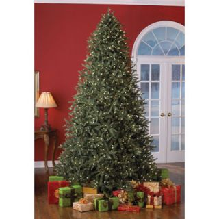 Pre Lit Frasier Fir Christmas Tree Soft White Lights Sylvania V64879