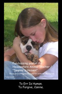 Animal Dog Shelter Pit Bull Rescue Fundraising Poster