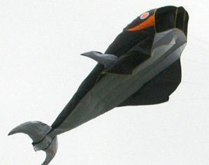 3D PARAFOIL WHALE KITE FLYING TOY OUTDOOR BEACH FUN GAME HOBBY BLACK