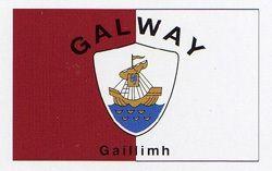 GALWAY COUNTY IRELAND IRISH FLAG 3X5 HISTORICAL BANNER GAILLIMH