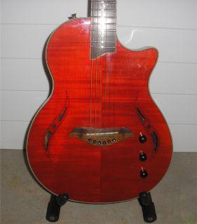 Giannini GNSL s FM Nashlyn Series Acoustic Electric Cutaway Guitar