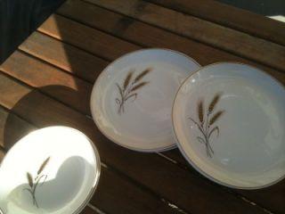 Royal Joci Hand Decorated 23K Gold Wheat Dinnerware Set Lot