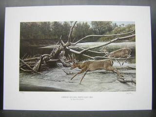 Ron Van Gilder Sandbar Crossing Whitetail Deer Print