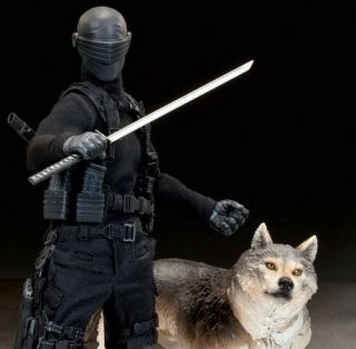 GI JOE SNAKE EYES and TIMBER SIDESHOW 1 6 SCALE 12 INCH FIGURE ITEM