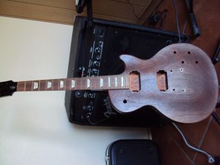 Gibson USA Les Paul Project Guitar