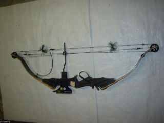 Golden Eagle Hunter Turbo E Compound Bow Package w/ Keller Pendulum