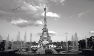 New XL Black and White Eiffel Tower Wall Mural Paris France Wallpaper