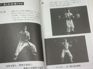 Okinawa karate Goju ryu book Martial arts japan kata kumite Tensho