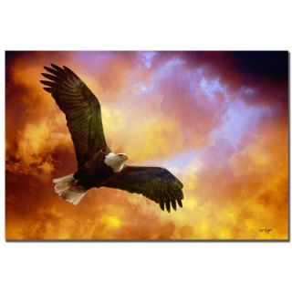 Flight of the Eagle by Lois Bryan, Canvas Art   22 x 32