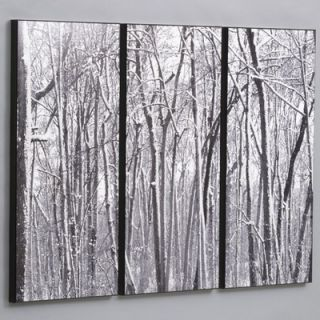 Snow Covered Woods Laminated Framed Wall Art Set   36 x 48