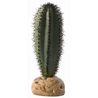 Hagen Exo Terra Saguaro Cactus Terrarium Plant