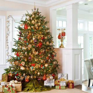 Bolster America Inc. Fresh North Carolina Fraser Fir Christmas Tree 6