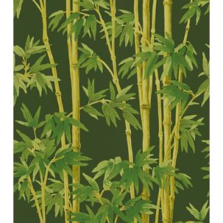 Brewster Home Fashions Echo Design Bamboo Wallpaper   566 43980