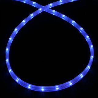 American Lighting LLC Mini Rope Light in Blue   LED MDF 12V BL